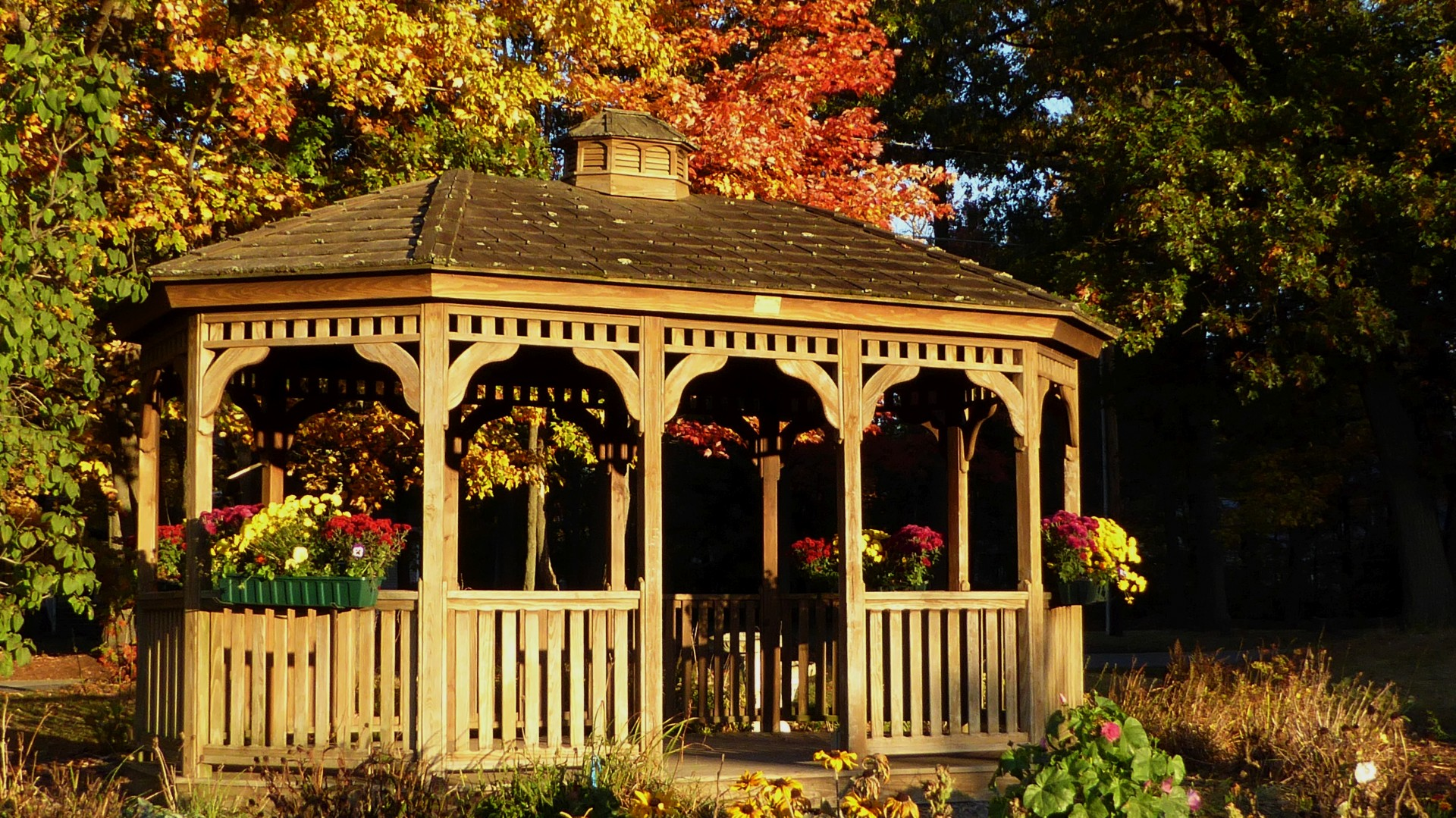 10x13 hard top gazebo surrounded by natural foliage
